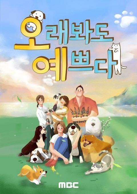 MBC综艺《长时间也漂亮》