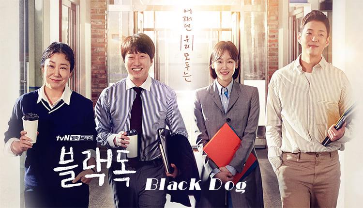 韓劇《Black Dog》中字下載 [1-16集大結局]