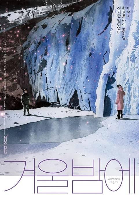 韩国电影《在冬夜》