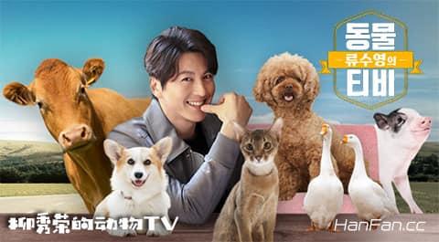 柳秀荣的动物TV